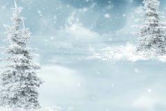 christmas_32460657498
