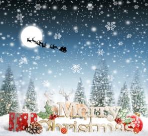christmas_32460814666