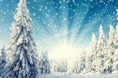 christmas_32462796794