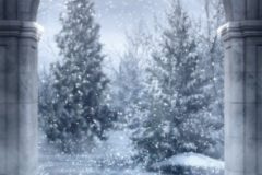 christmas_32467337346