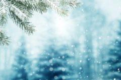 christmas_32506082547
